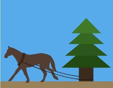 马拉松树比赛预告—嵖岈山创意比赛助力山马