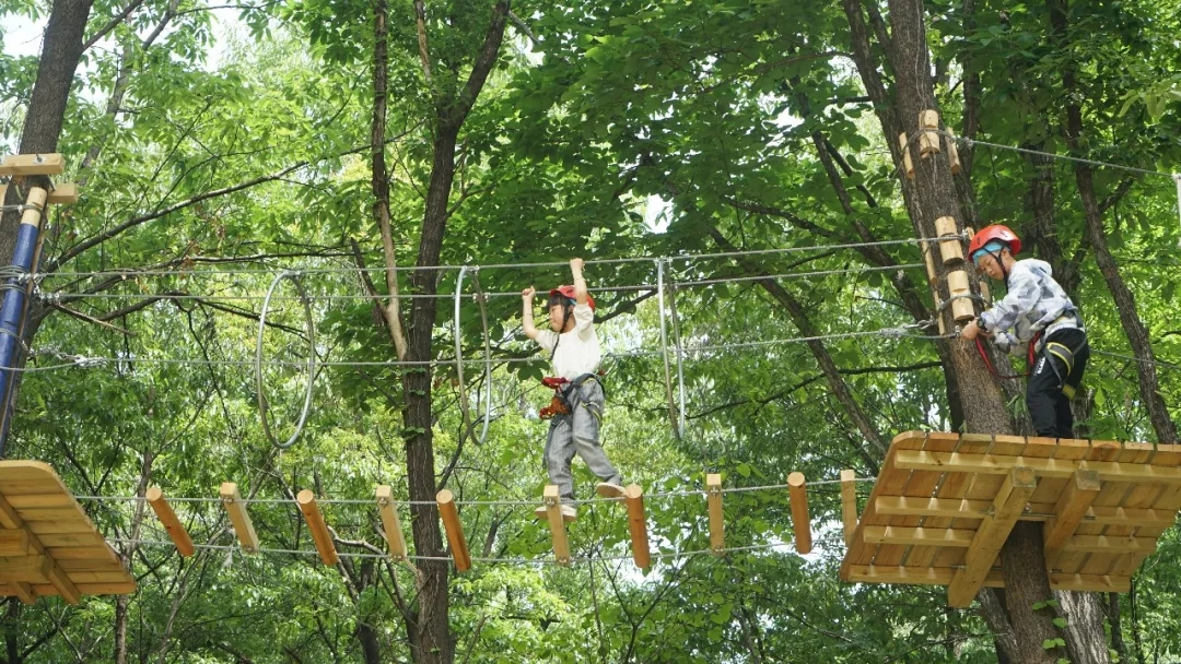 福利来袭:母亲节,带妈妈一起来嵖岈山玩丛林飞越!